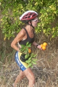 Stealing oranges from an orchard while biking across Portugal because 'they have Vitamin C'